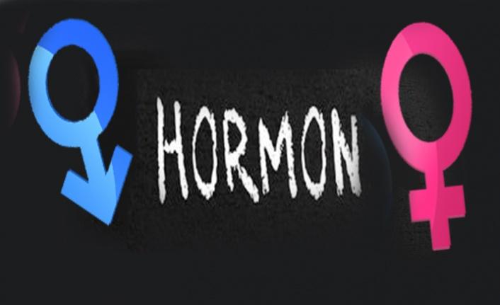 SIRADA HORMON BOMBASI VAR