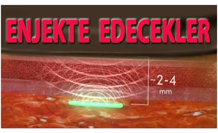 ZİHNİMİZ &BEDENİMİZ B. GATES'E EMANET