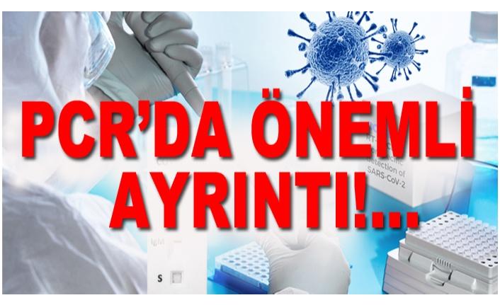 HANGİ PCR SONUCU?